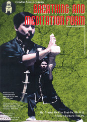 Internal Martial Arts Nei Gung Kung Fu Training