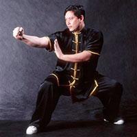 Nan Quan Southern Fist Wushu