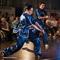 wu shu sword form