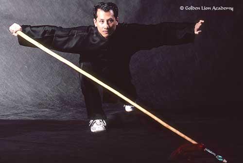 sifu steeve wushu spear form