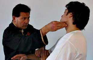 Best Pressure Points for Self Defence and Martial Arts dai sifu pier tsui-po
