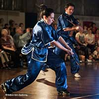wu shu sword form