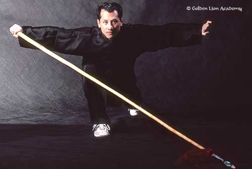 sifu steeve wushu spear form